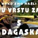 Avanture Gorana Šafareka: Istraživanjem džungle do pronalaska nove vrste zmije