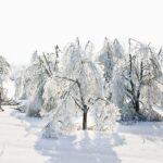 Analiza meteoroloških uzbuđenja koja slijede do kraja tjedna